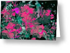 Rose 72 Greeting Card