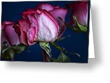 Rose Still Life Greeting Card