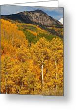 San Juan Mountains In Autumn Greeting Card