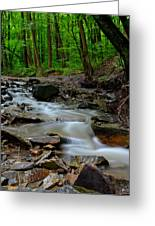 Serenity Greeting Card by Frozen in Time Fine Art Photography