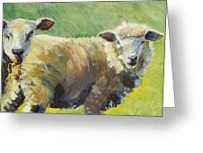 Sheep Painting Greeting Card