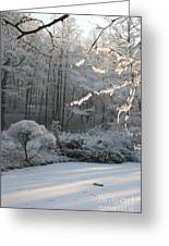 Snowy Trees Landscape Greeting Card