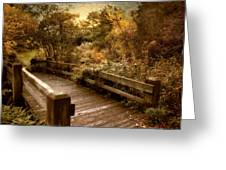 Splendor Bridge Greeting Card
