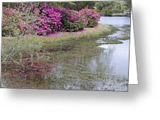 Spring In Mississippi Greeting Card