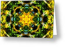 Stained Glass Sun Mandala Greeting Card