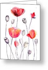 Stylized Poppy Flowers Illustration  Greeting Card