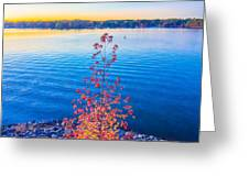 Sunset At Lake Wylie Greeting Card