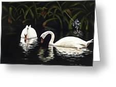 Swans II Greeting Card