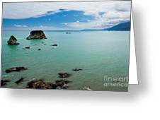 Tasman Sea At West Coast Of South Island Of Nz Greeting Card