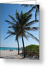 The Beach In Hollywood Florida Greeting Card