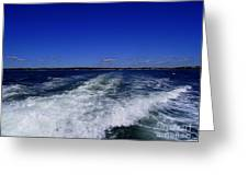 The Wake Of The Island Queen Greeting Card