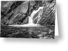 True's Brook Gorge Water Fall Greeting Card
