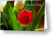 3 Tulips For Mother's Day Greeting Card