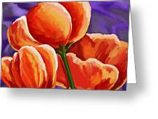 3 Tulips Red Purple Greeting Card