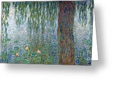 Waterlilies Morning With Weeping Willows Greeting Card
