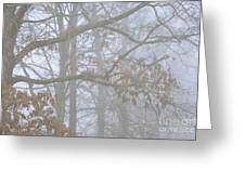 White Oak Tree In Fog Greeting Card