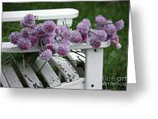 Wild Onion Flowers Greeting Card