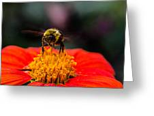 Working Bee Greeting Card