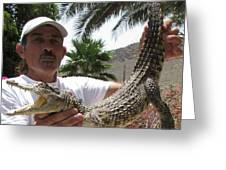3 Year Old Crocodile Greeting Card