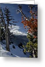 Mt Hood From Lookout Mtn Greeting Card