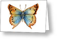 33 Opal Copper Butterfly Greeting Card