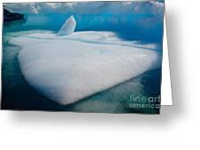 Iceberg, Antarctica Greeting Card