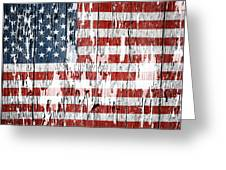 American Flag 49 Greeting Card