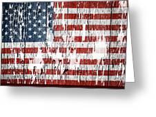 American Flag 49 Greeting Card
