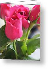 Roses For You  Greeting Card by Gornganogphatchara Kalapun