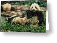 3722-panda -  Colored Photo 2 Greeting Card