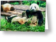 3722-panda -  Neo Greeting Card