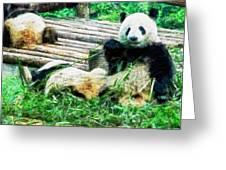 3722-panda -  Oil Stain Sl Greeting Card