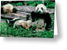 3722-panda -  Pastel Chalk 1 Greeting Card