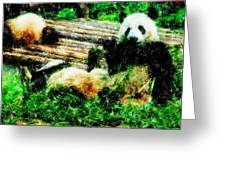 3722-panda -  Pastel Pencils Greeting Card