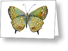 38 Hesseli Butterfly Greeting Card