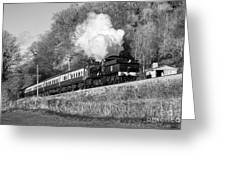 3850 At Castle Hill Greeting Card
