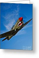 A Curtiss P-40e Warhawk In Flight Greeting Card