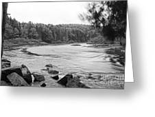 Bog River Greeting Card