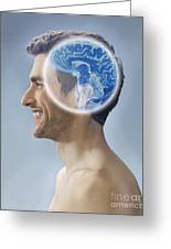 Brain Scan, Conceptual Image Greeting Card