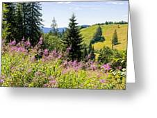Carpathians Landscape Greeting Card