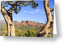 Cathedral Rock Framed By Juniper In Sedona Arizona Greeting Card