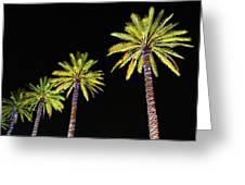 4 Christmas Palms Greeting Card