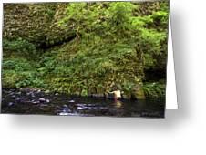 Columbia River Gorge, Oregon, Usa Greeting Card