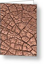 Cracked Dry Clay Greeting Card