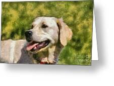 Golden Retriever Portrait Greeting Card