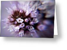 Spring Is Bursting Out All Over. Greeting Card