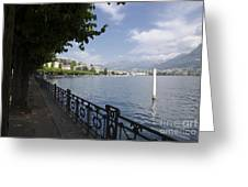 Lake Front With Trees Greeting Card