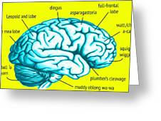 Learn About Your Brain Greeting Card
