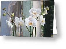 4 Orchidee Greeting Card