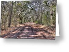Road To Angel Oak Greeting Card